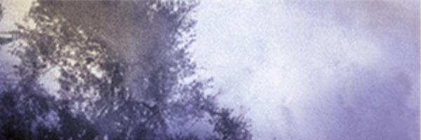 fell-banner